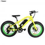 Electric Bike  TDE19
