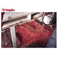 China Passion Fruit Juice Production Machine , Ring Pull Can Fruit Juice Processing Plant on sale