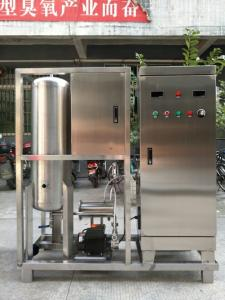 China high concentration ozonated water generator for fruit and vegetable disinfection on sale
