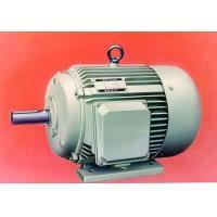 Y Series AC TEFC Three-Phase Electric Motor