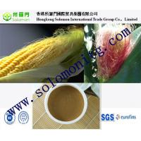 China top quality zea mays corn silk extract --Zea mays L. -corn silk extract hair nourishing on sale