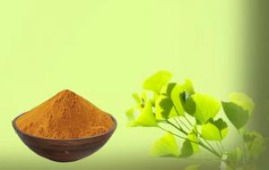 China Low Ginkgolic Acid Ginkgo Leaf Extract For Cosmetics on sale