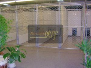 China China supplies,Chain Link Dog Kennel,dog runs,dog kennels,dog cages,outdoor dog kennel on sale