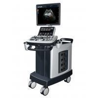 3D / 4D General Imaging Trolley Ultrasound Scanner High Resolution For Cardiology