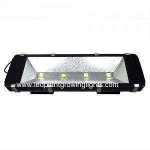 China Waterproof Green 200W High Power Led Flood Light 6000K For Garden Outside Lights on sale