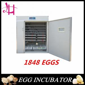 China Automatic Poultry Small Chicken Egg Incubators 1848 Chicken Eggs best price on sale