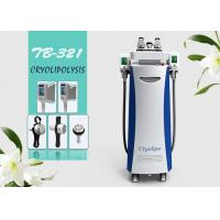 China Five Handle Cryolipolysis Fat Freezing Fat Removal Slimming Multifunctional Machine on sale