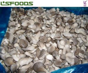 China frozen oyster mushroom on sale