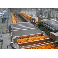Complete Fruits  Juice Processing Line Turn-Key Project / Juice making Machine