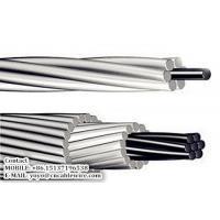 Aluminum Conductor Steel Reinforced (ACSR)