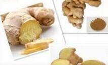 China Ginger Extract on sale