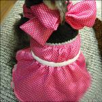 Grande/princesa bonito formal pequena Customized Cão Pingamento com Bowknot