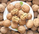 Nueces secas naturales chinas de la fruta/nueces en Shell