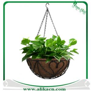 China Wire Hanging Basket Coco Liner on sale