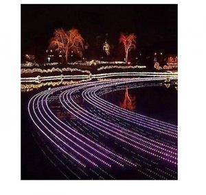 China 5050 SMD RGB 5m DC12V 60leds/meter flexible Waterproof rgb led strip garden decoration on sale
