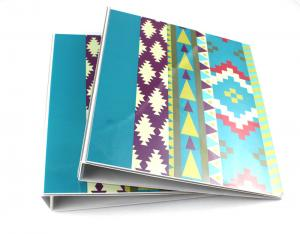 pantone printing a4 paper folder 2 ring binder pvc file folder for