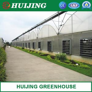 China Low cost agricultural greenhouse for sale/ invernadero in China Factory on sale