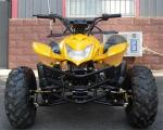 125cc Air Cooled Youth Racing ATV 4 Stroke Single Cylinder Chain Drive