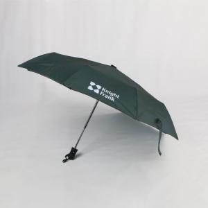 China 21 inch green auto open close umbrella with colored handle and zip case on sale