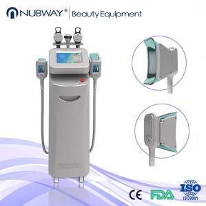 China Cryolipolysis Beauty Salon Equipment/Cryo Cryolipolysis on sale