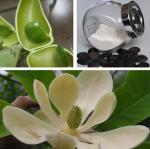 high quality 56-69-9 natural 98% Griffonia seed extract 5-HTP