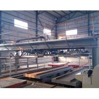 China Calcium silicate board production plant on sale