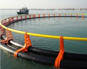 China Fish Farming Floating Net Cages Round Square Shape Diameter 10m-40m on sale