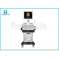 Hospital PL-2200 Color Doppler Medical Ultrasound Machine / Equipment