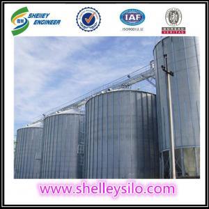 China 5000 ton galvanized steel cereal storage grain silo price for sale on sale