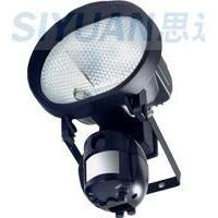 Security Lighting Camera/ DVR: 500W lighting+ Security Camera/DVR