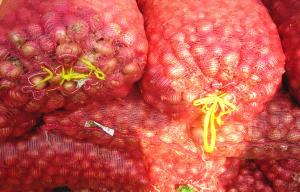 China Fresh Red Asian Shallots Containing Vitamin C , Folic Acid For Market, improve immunity on sale