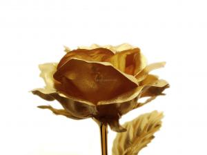 China 24K Gold Rose (Small) on sale