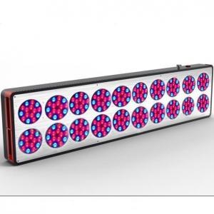 China Cidly G-A20 730w LED grow light best replace 400w HPS lamps,CE RoHS FCC UL grow lights on sale