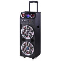 Pro Audio Bluetooth Microphone PA Disco Light Portable Party Speaker System