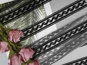 China Nylon Linear Geometric Black Embroidered Lace Fabric on sale