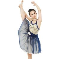 China Ballet Dance Tutu Dress Competition Performance Wear Sweetheart Bodice Ballet Costume fairy princess on sale