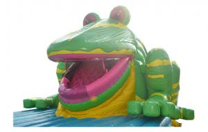 China Adult And Children PVC Outdoor Large Inflatable Water Slides With Bouncer on sale