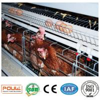 Battery Chicken Cage for Layers with Full Set Feeding Equipment