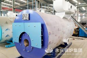 China 30 Liter Gas Fired Hot Water Boiler Residental Low Pressure Steam Boiler on sale