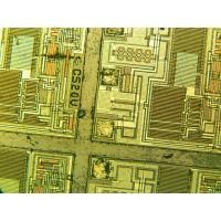 China BLM-600B portable digital microscope 4G SD Card storage and printing on sale
