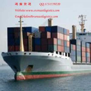 China Sea freight shipping from Shenzhen,China to worldwide on sale