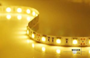 China DC12/24V 5m IP65 LED Strips Light , Energy saving Led flexible strip lights on sale
