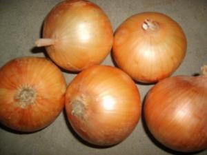 China Especificação fresca 5cm - 7cm das cebolas da colheita nova amarela, 7cm - 9cm on sale