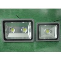 Pure White Outdoor LED Flood Lights , 265V Emergency Hallway Lighting