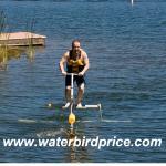 Pájaro de agua fuerte de la venta caliente FRP en venta