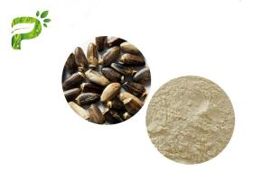 China DMF GMP Certified Pure Natural Plant Extracts Milk Thistle Seed Extract Silybin 30% 90% on sale