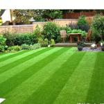 Waterproof Colorful Landscaping Synthetic Grass , Fake Grass Landscape