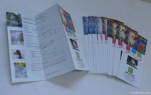 China Leaflet, Flyer, Brochure Printing, Catalog on sale