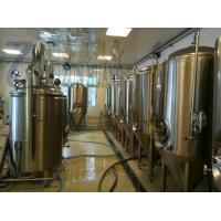 China Stainless steel or copper 300L beer brewing machine for craft beer micro brewery on sale