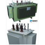 6.6kV - 800 KVA Oil Immersed Transformer Safety Low Loss Step Up Transformer